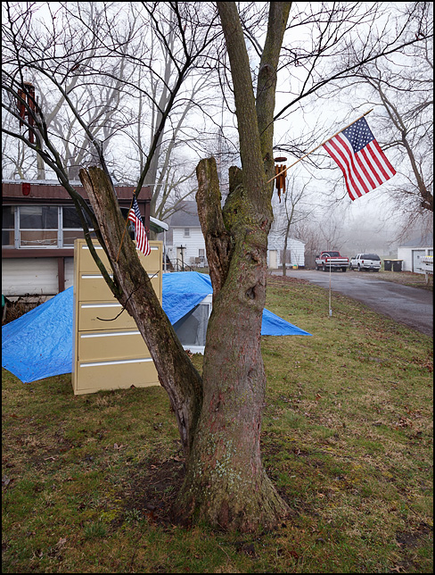 Two small American flags fly from a broken tree in a trailer park in Fort Wayne, Indiana.