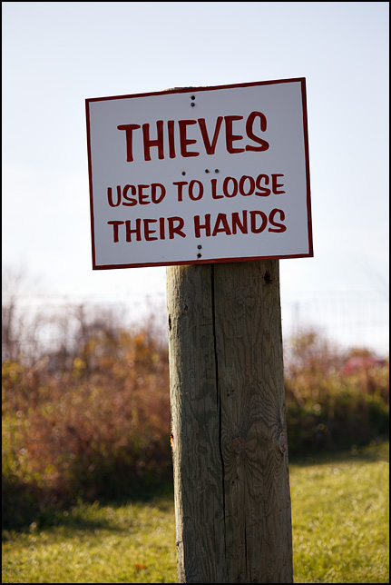 Thieves Used To Lose Their Hands. This sign is posted in front of Vandermark Signs, a sign company on US-30 near Larwill, Indiana. On the sign, Lose is misspelled as Loose.