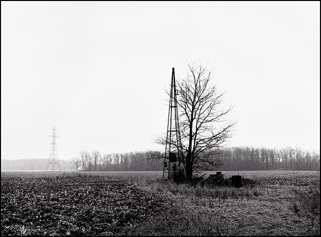 The empty field on Emenhiser Road where Richard Youse's house once stood in rural Allen County, Indiana. The remnants of the driveway are visible in the tall grass and weeds in the lower right that stretch to the windmill tower.