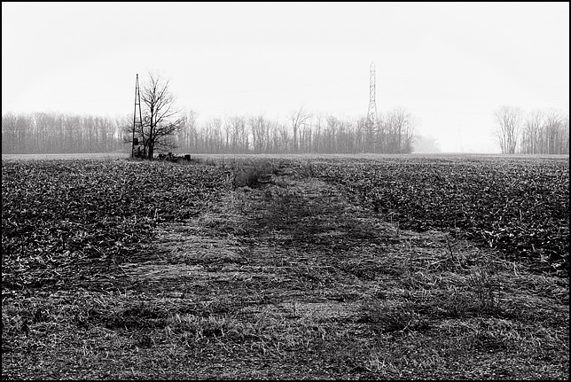The empty field on Emenhiser Road in rural Allen County where Richard Youse's house once sat. The remnants of the driveway leading to the windmill are visible in the area between the fields.