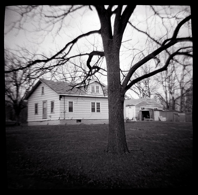 Photograph of an old house on a hill behind a tree, made with a Diana toy camera.