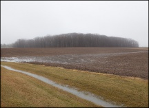 Rainy January Morning in Rural Indiana #1