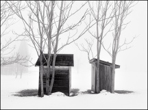 Outhouses in the Fog #1