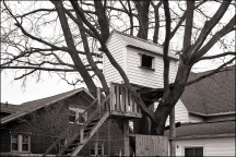 Treehouse in Churubusco