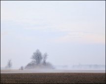 Foggy Indiana Sunrise #1