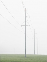 Electricity Pylons On A Foggy morning