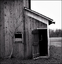 Abandoned Barns On Lower Huntington Road #1
