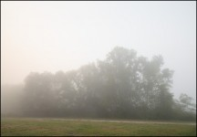 Foggy September Morning #2