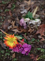 Silk Flowers On The Muddy Ground