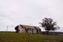 Abandoned House in Tecolote #1