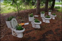 Flowerpot Potties